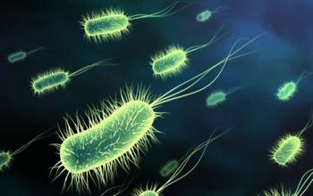 disinfezione-virus